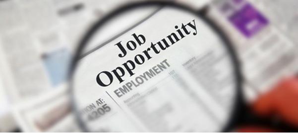 Job opportunity For Freshers